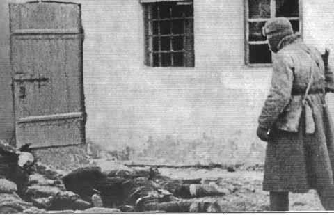 Расстрелянные оккупантами советские