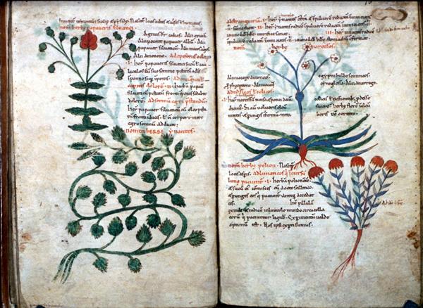средневековый трактат упоминающий опиум