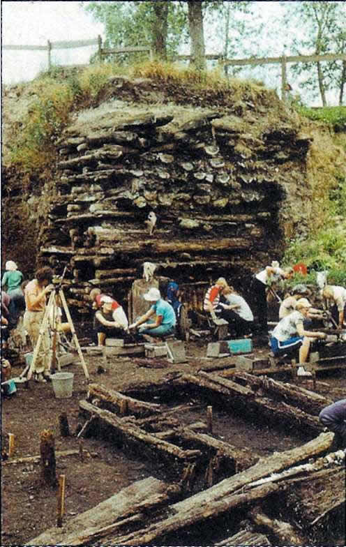 Троицкий раскоп, на котором обнаружено больше всего берестяных грамот